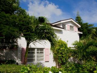 Conch Pearl - Harbour Island vacation rentals