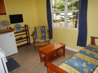 Close to town and beach $63 per night - San Pedro vacation rentals