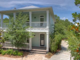 Abounding Grace - Seagrove Beach vacation rentals
