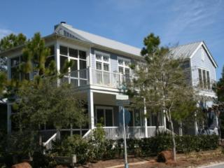 Southern Comfort - Seagrove Beach vacation rentals