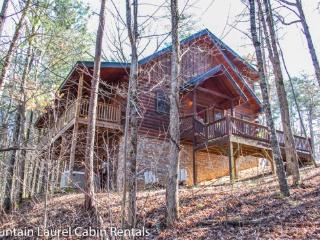 THE GREAT ESCAPE- 3 BR/3BA, SLEEPS 9, WOOD BURNING FIREPLACE, HOT TUB, PING PONG, WIFI, MOVIE ROOM, CHARCOAL GRILL, $140 A NIGHT! - Blue Ridge vacation rentals