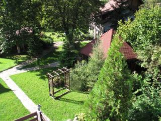 Pensiunea Dumbravita - Retezat Mountains - Romania vacation rentals