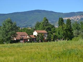 Villino Laura - Montecchio vacation rentals