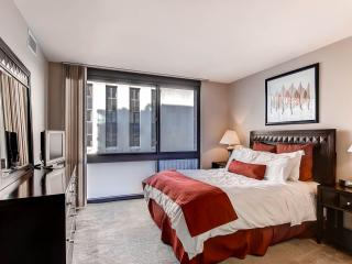 Lux 1BR Newseum Apt on the Mall - Washington DC vacation rentals