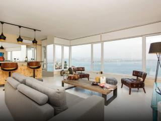 BOSPHORUS SEA AND SULTANAHMET VIEW, CENTER, TAKSIM - Istanbul & Marmara vacation rentals