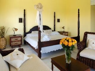 Tropical Jr.Suite, Puerto Plata, Dom Rep - VIP - Puerto Plata vacation rentals