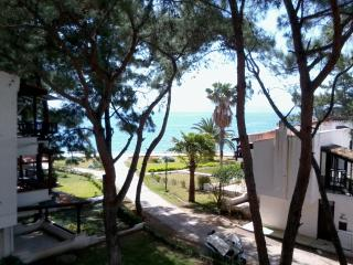 Datca, Aktur  Holiday Flat with Sea view - Datca vacation rentals