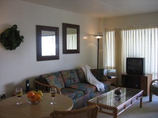 1 Bdroom, steps away from Waikiki Beach, WiFi, $99 - Puerto Vallarta vacation rentals