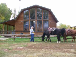 Paint Rock Cabin - Wyoming vacation rentals