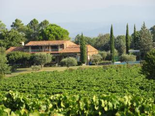 Villa Le Mas - La Garde-Freinet vacation rentals