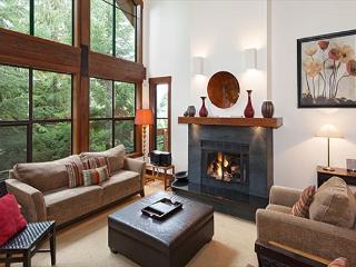 Northern Lights #41 | Whistler Platinum | Gourmet Kitchen, Scenic Views - Brackendale vacation rentals