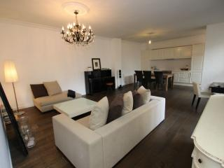 Luxury 1 bedroom flat in Etoile Champs-Elysees - London vacation rentals