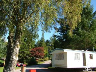 Silver Caravan with garden views - Lochaber vacation rentals