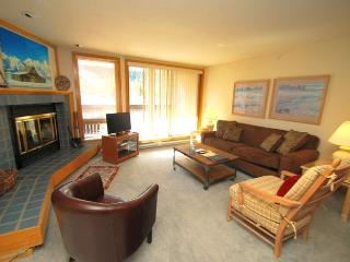 Liftside Condominiums 202 - Stainless steel appliances, amazing ski area views, walk to slopes! - Summit County Colorado vacation rentals