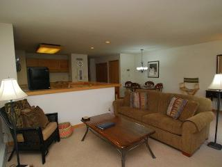 Liftside Condominium 21 - Updated appliances, remodeled bathroom, ski area views, walk to slopes! - Keystone vacation rentals