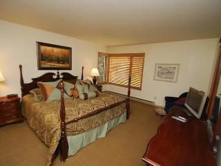 Ski Run Condominiums 201 - Walk to slopes, ski area views, new tile, pool! - Keystone vacation rentals