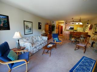 Ski Run Condominiums 203 - Walk to slopes, ski area views, spacious accommodations, pool! - Keystone vacation rentals