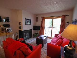 Snowdance Condominiums A202 - Walk to slopes, updates, Mountain House! - Keystone vacation rentals