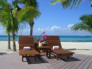 Cozumel Casa Brie - Cozumel vacation rentals