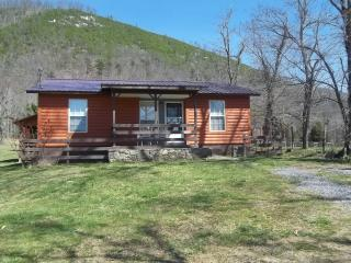 Pleasant Bank River Front Rentals Log Cabin - Marshall vacation rentals