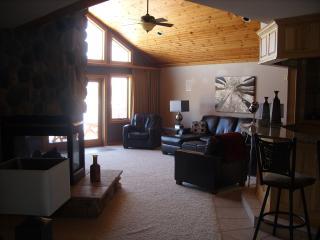 Castle Rock Lake Northern Bay Penthouse Condo - Wisconsin vacation rentals