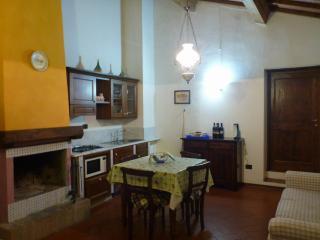 Casa Carbonaia -Vinci- Ap S.Lucia - Vinci vacation rentals