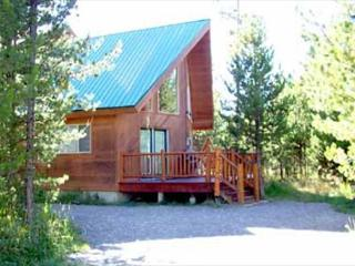 Cabin in the Trees - Island Park vacation rentals