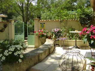 Domaine a l'Aise. St Pargoire. Nr Pezenas - Saint-Pargoire vacation rentals