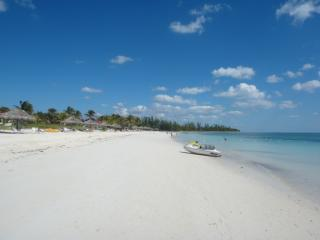 Paradise awaits!  Its Better in The Bahamas - Freeport vacation rentals