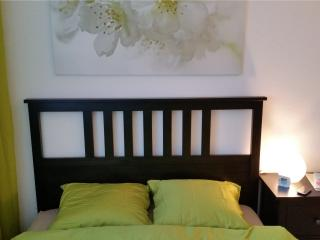 Max Aviation Apartments Queensize bedroom - Bern vacation rentals