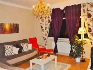 Large Apartment Close to Sultanahmet - Istanbul vacation rentals