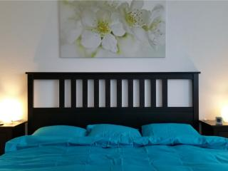 Max Aviation Apartments Kingsize bedroom - Bern vacation rentals
