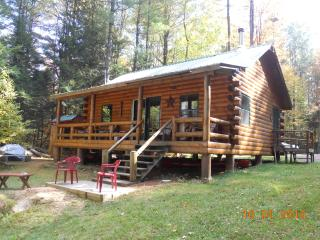 Riverside cabin in the Adirondack Mountains - Star Lake vacation rentals