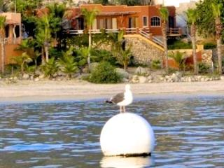 Casa Front Row, Enjoy the best beach in Baja - Buenavista vacation rentals