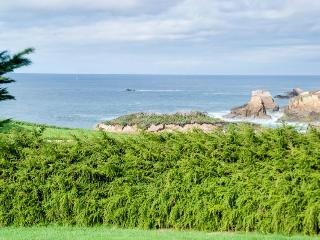 Dream Scape - Fort Bragg vacation rentals