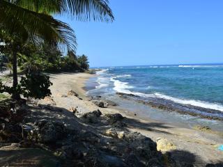 Sea Turtle Guest House - Hatillo vacation rentals