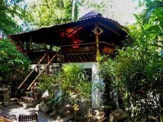 River Dream House @ congo-bongo - Puerto Viejo de Talamanca vacation rentals