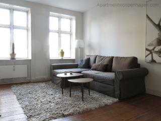 Close To Tivoli - Close To Main Train Station - 484 - Copenhagen Region vacation rentals