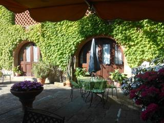 agriturismo Pian del Gallo 1 - Greve in Chianti vacation rentals