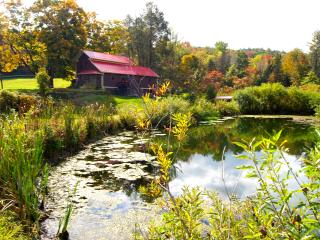 TWIN PONDS, Pet Friendly 6 room Farmhouse on 20 ac - Pittston vacation rentals