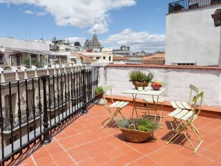 Apt:  Terrace between Puerta del Sol / Plaza Mayor - Madrid vacation rentals