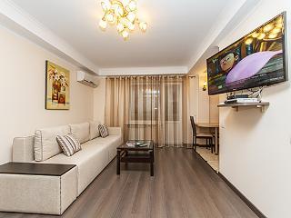 Very nice apartment - Kiev vacation rentals