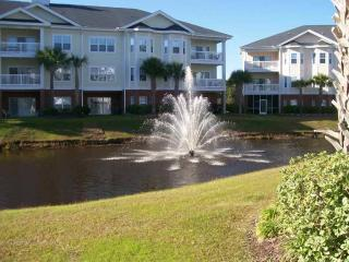 1004 Ray Costin Way - Garden City vacation rentals