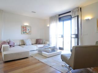 The Akiva Penthouse - Jerusalem vacation rentals