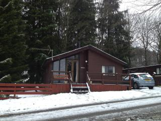 WildWood Lodge - Beattock vacation rentals