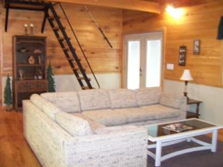 Oasis One On The River - Grove vacation rentals