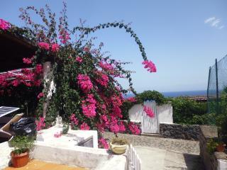 isole eolie salina villa vista mare - Malfa vacation rentals