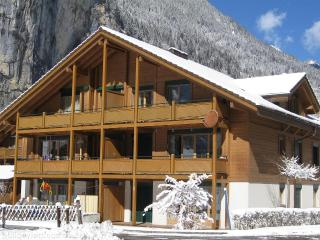 Jungfrau holiday apartment Ski and Summer. - Jungfrau Region vacation rentals