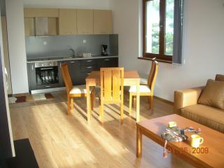 Rila Park A44 - Sofia Region vacation rentals