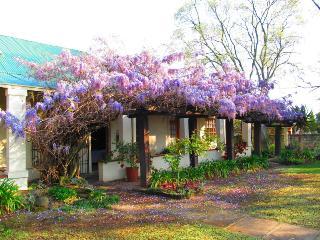 Top House B&B - Ladybrand vacation rentals